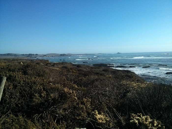 The coast at Piedras Blancas looking south
