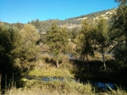 American River - the spot where gold was first discovered