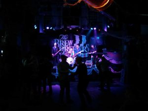 Mike Reeves Band at The Brew Brothers