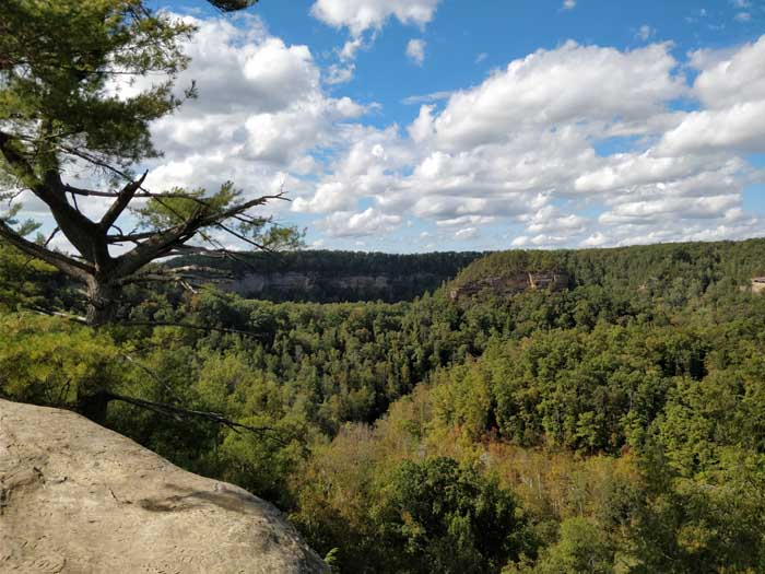 Sky Bridge, Red River Gorge