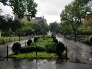Washington Square Park #4