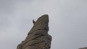Climbing a Needle
