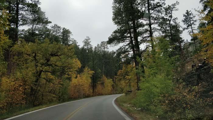 Iron Mountain Road #1