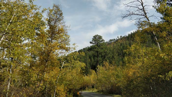 Needles Highway southern end #1