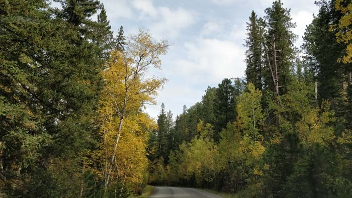 Needles Highway southern end #2