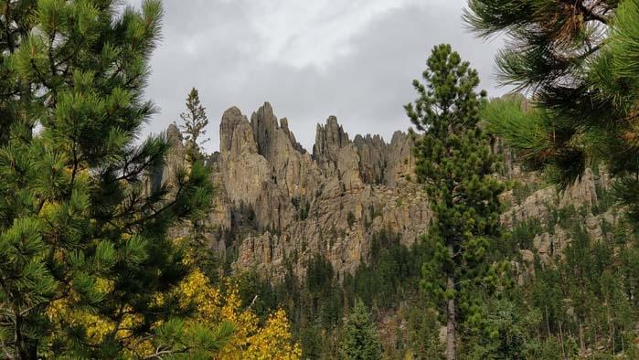 Needles of the Black Hills #2
