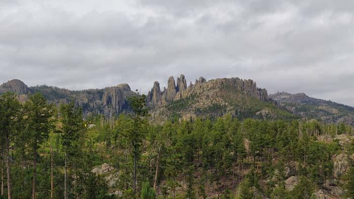 Needles of the Black Hills #3