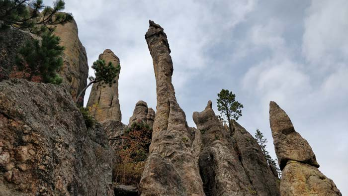 Needles of the Black Hills #4