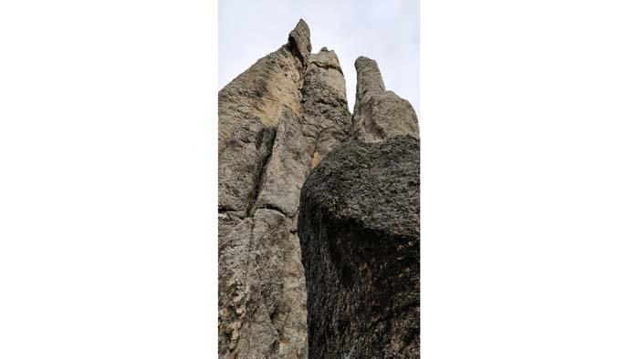 Needles of the Black Hills #6