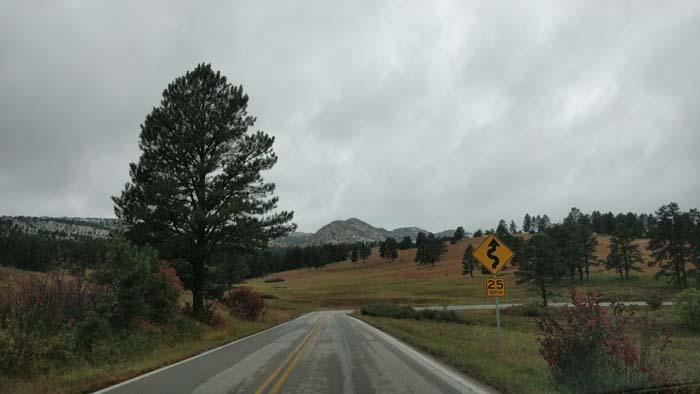 On the North Wildlife Loop Road #3