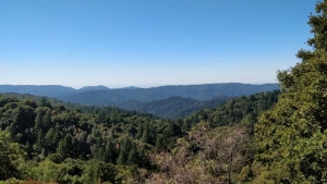 Santa Cruz Mountains