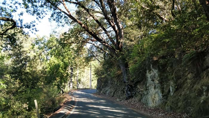 Skyline Boulevard single lane #4