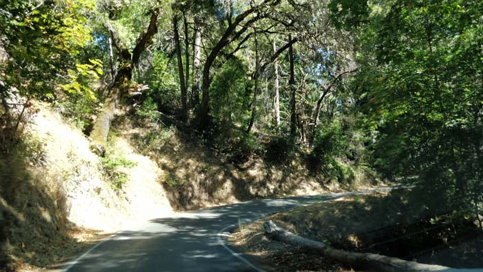 Skyline Boulevard single lane #5