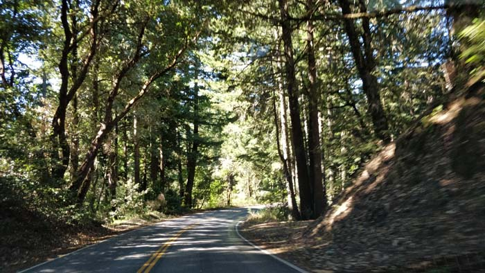 Skyline Boulevard two lane #7