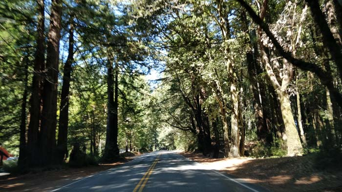 Skyline Boulevard two lane #8