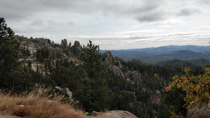 View from Needles Highway #1