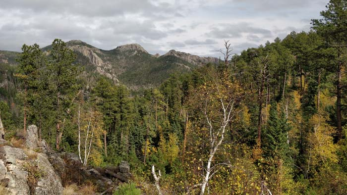 View from Needles Highway #2