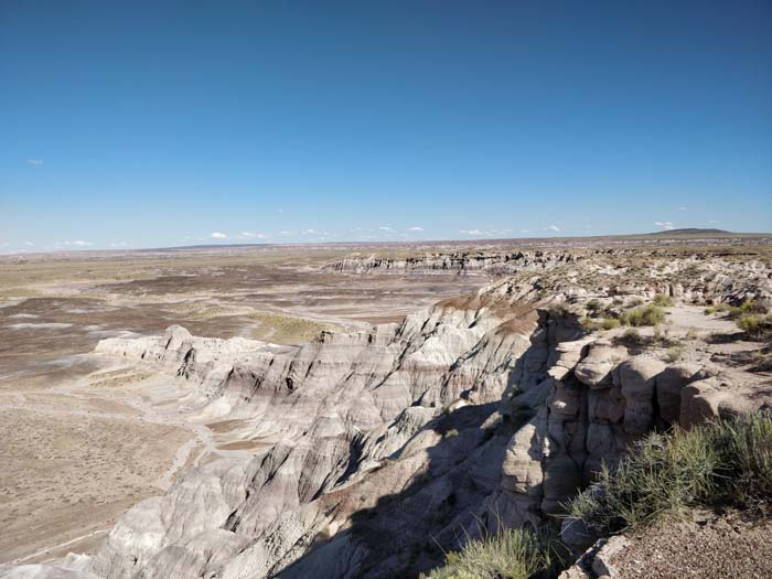 Blue Mesa, Petrified Forest #2