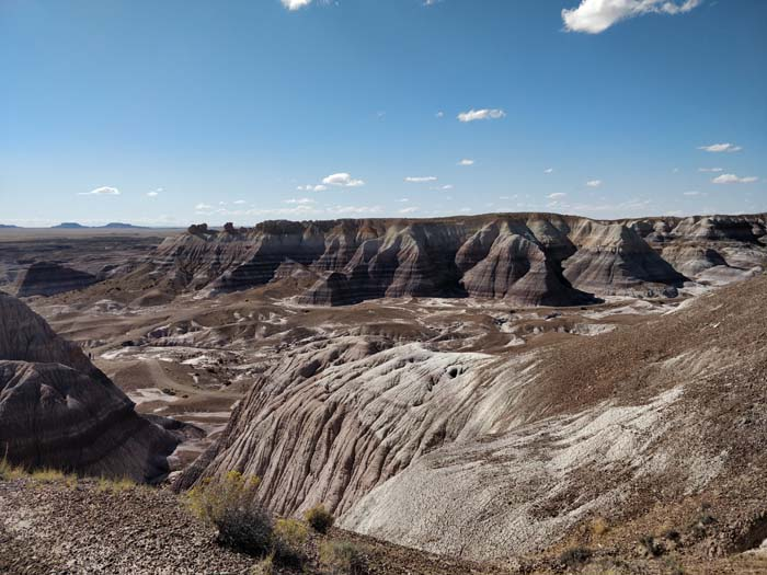 Blue Mesa, Petrified Forest #3