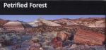 Petrified Forest leaflet